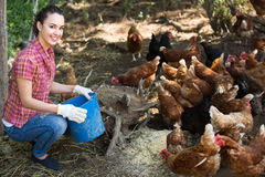 Женский фермер на птицеферме стоковая фотография rf