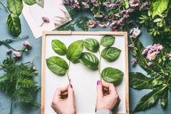 Женский флорист вручает держать ветви с зелеными листьями на месте для работы с цветками, белым подносом и чистым листом бумаги Стоковые Изображения RF