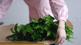 Женский флорист сортирует вне зеленые цвета для букета на бумаге kraft стоковые фотографии rf