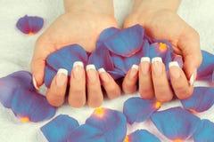 женский французский manicure рук стоковое изображение