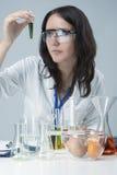 Женский штат лаборатории общаясь с химикатами цвета в лаборатории стоковое фото