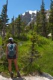 Женский Hiker смотря плосковерхнюю гору Стоковое Фото