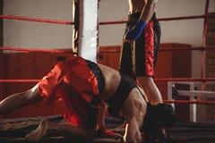 2 женских боксера воюя в кольце Стоковая Фотография RF