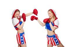 2 женских боксера воюя на белизне Стоковое фото RF