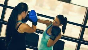 2 женских боксера на тренировке Стоковое Изображение