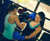 2 женских боксера на тренировке Стоковые Фото