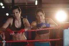 2 женских боксера стоя в боксерском ринге Стоковая Фотография RF