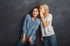2 женских друз имея потеху на предпосылке студии Стоковое фото RF