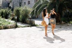 2 женских друз sightseeing Стоковые Изображения RF