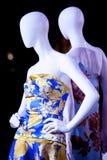 2 женских куклы в платьях Стоковые Изображения RF