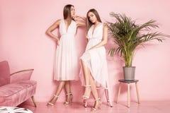 2 женских модели представляя в элегантных платьях Стоковое Изображение