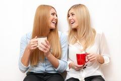2 женских друз имея потеху Стоковая Фотография