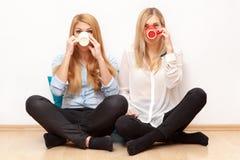 2 женских друз имея потеху Стоковая Фотография RF