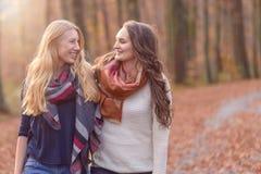 2 женских друз идя через полесье осени Стоковые Изображения RF