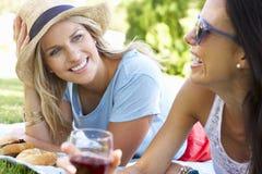 2 женских друз наслаждаясь пикником совместно Стоковые Фотографии RF