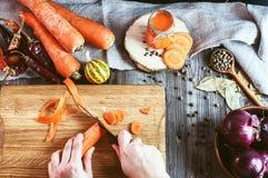 2 женских руки прервали свежие куски моркови Стоковые Изображения RF