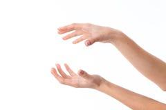 2 женских руки представили одну напротив другой изолированной на белой предпосылке Стоковое Изображение
