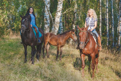 2 женских equestrians с чистоплеменными коричневыми лошадями и осленком между ими Стоковая Фотография RF