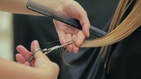 Женское владение парикмахера в руке между замком пальцев волос, гребнем и крупным планом ножниц сток-видео