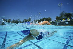 Женское заплывание пловца в бассейне стоковое изображение