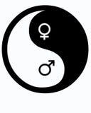 женское мыжское yin yang Стоковые Изображения