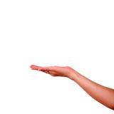 женское удерживание руки хочет все, что угодно вы Стоковая Фотография RF
