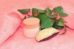 Женственное естественного cream sprig опарника установленное, красота и conce косметик Стоковое фото RF