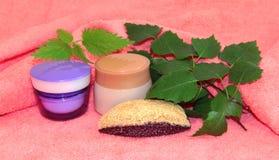 Женственное естественного cream sprig опарника установленное, красота и conce косметик Стоковые Фото
