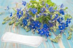 Женственное фото гигиены Голубые цветки и пусковая площадка менструации санитарная мягкая на деревянной предпосылке Менструальная Стоковые Изображения
