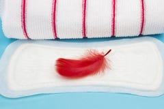 Женственные продукты гигиены, ежедневная менструальная пусковая площадка и полотенце Terry Календарь периода крови Предохранение  Стоковое Фото