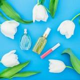 Женственный дух, губная помада и белые тюльпаны цветут на голубой предпосылке Блог красоты Плоское положение, взгляд сверху Стоковые Фото