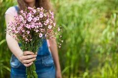 Женщина дает розовые цветки как подарок, с космосом экземпляра как предпосылка Стоковое Изображение RF
