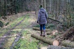 Женщина балансируя на стволе дерева во время прогулки стоковое фото