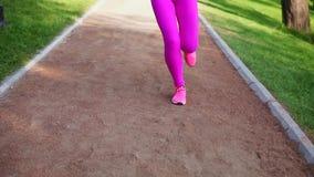 Женщина бегуна бежать в парке работая outdoors, близко вверх на ногах Steadicam стабилизировало съемку Тренировка спортсменки акции видеоматериалы