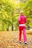Женщина бежать в лесе осени.  Женская тренировка бегуна. Стоковые Фото