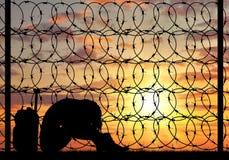 Женщина беженца отчаяния силуэта Стоковые Фото