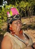 женщина бразильского индейца costumes типичная Стоковые Фото