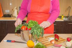 Женщина варя здоровую еду в кухне Варящ здоровую еду дома кухня подготовляя женщину овощей Подготавливать блюда Стоковая Фотография RF