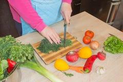 Женщина варя здоровую еду в кухне Варящ здоровую еду дома Стоковые Изображения RF