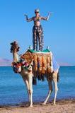 женщина верблюда Стоковое Изображение RF