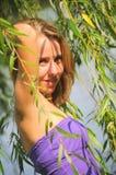 женщина вербы портрета красотки Стоковое Изображение
