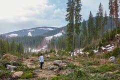 Женщина видя отаву обезлесения Стоковые Изображения RF
