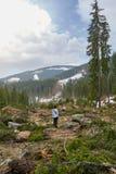 Женщина видя отаву обезлесения Стоковые Фото