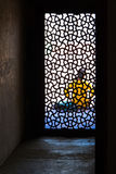 Женщина вне клетки Стоковое Фото