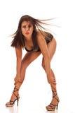 женщина волос сексуальная одичалая стоковое изображение