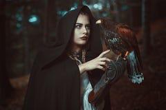 Женщина волшебника с близким другом хоука стоковое изображение rf