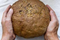 Женщина вручает hraditional домодельный хлеб всей пшеницы стоковые фотографии rf