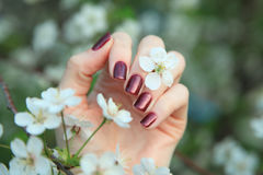 женщина вручает manicure стоковая фотография rf