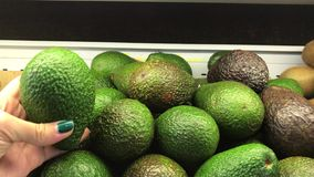 Женщина выбирая авокадо в супермаркете Свежий органический авокадо видеоматериал