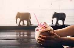 Женщина выпивает сладкие свежие кокосы стоковое фото